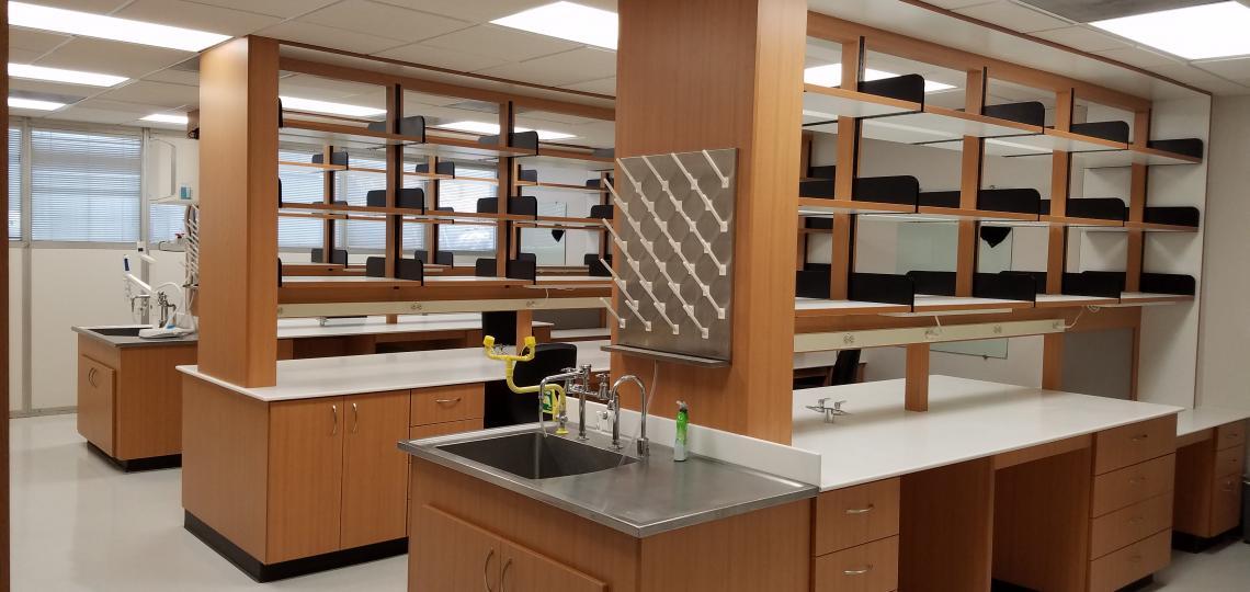 Orengo Lab Space
