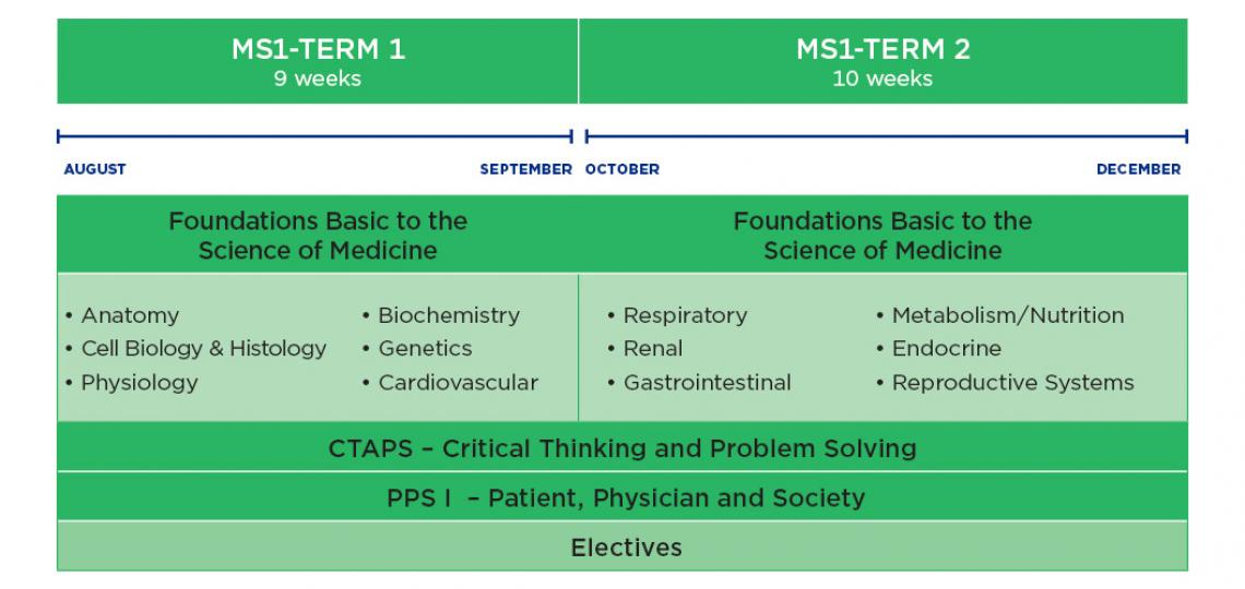 MD Program curriculum schematic for year 1-Fall