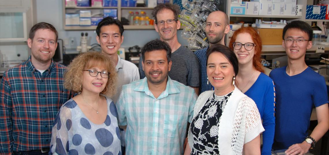 waterland lab group