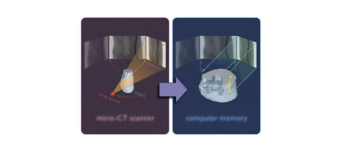 micro computed tomography methods