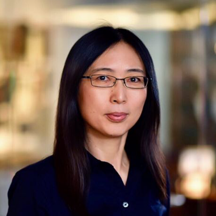 Dr. Chonghui Cheng, associate professor at the Lester and Sue Smith Breast Center, of molecular and human genetics and of molecular and cellular biology at Baylor College of Medicine