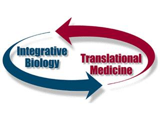 Illustration depicting how the two integrated research groups interact with each other in an ongoing loop.