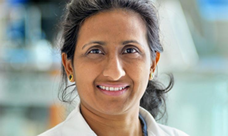 Uma Munnur, M.D., Professor, Director, Obstetric Anesthesia Fellowship Program